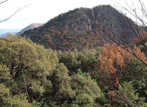 金華山 064