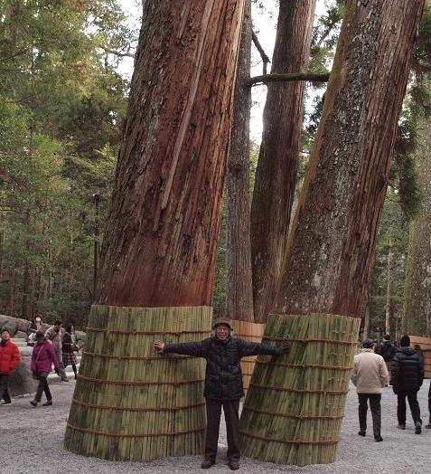 大木と 045