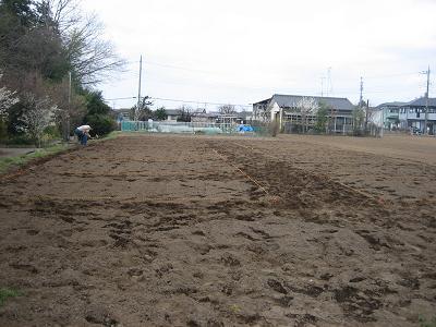 町内会の畑