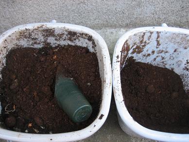 右が牛フン堆肥、左が生ごみたい混ぜ込み中
