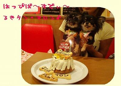 姉妹ケーキ