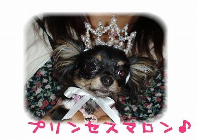 プリンセス1