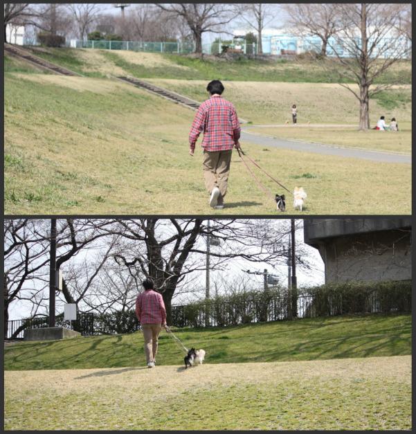 HAPPY☆SMILE-公園8