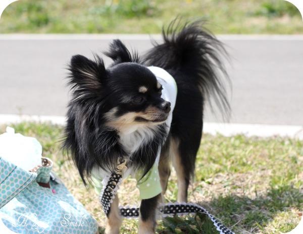 HAPPY☆SMILE-公園3