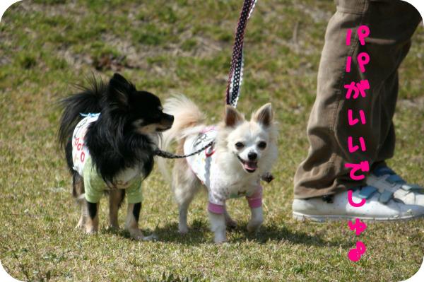 HAPPY☆SMILE-公園4