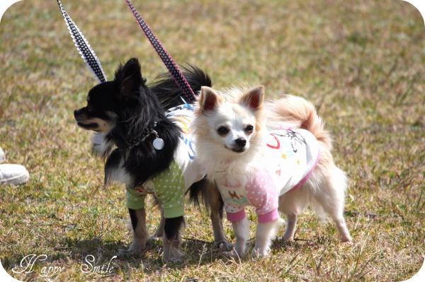 HAPPY☆SMILE-公園6