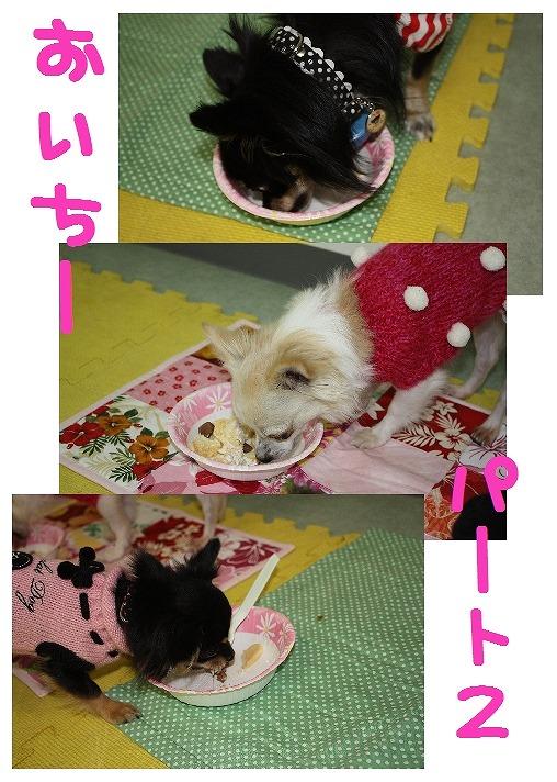 ★チワワン☆ハウス★-misato20