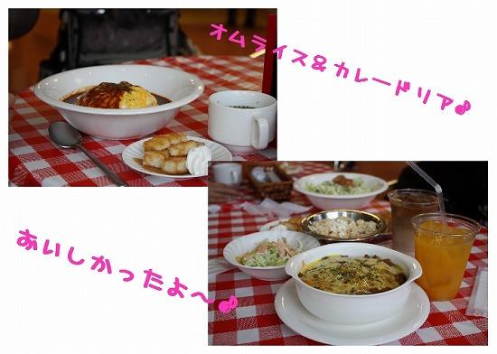 ★チワワン☆ハウス★-ららぽ5