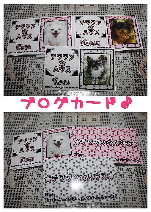 ★チワワン☆ハウス★-プレゼント1