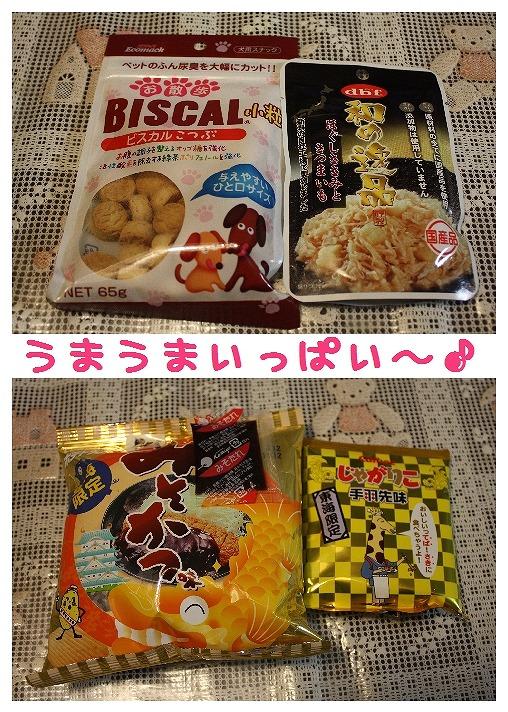 ★チワワン☆ハウス★-プレゼント2