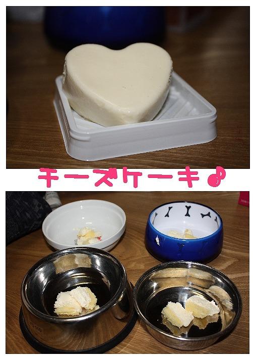 ★チワワン☆ハウス★-実家9