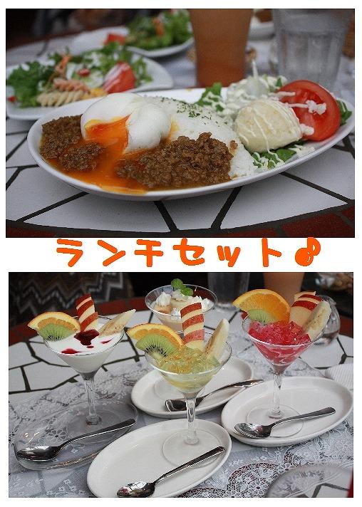 ★チワワン☆ハウス★-ラフレシア4
