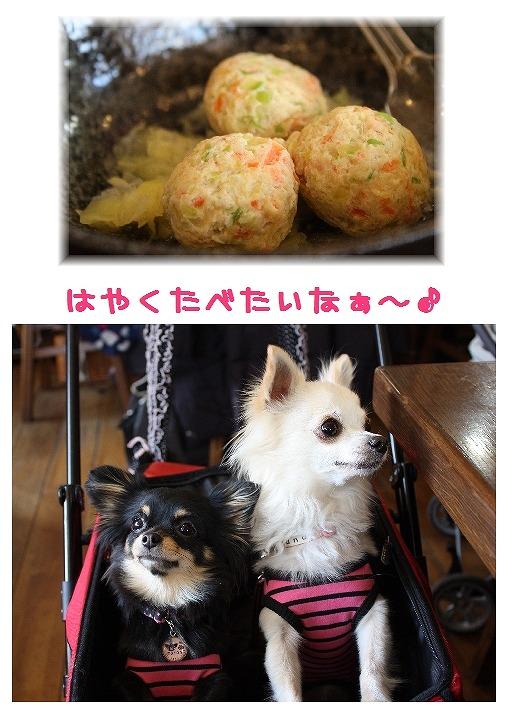 ★チワワン☆ハウス★-カフェ2