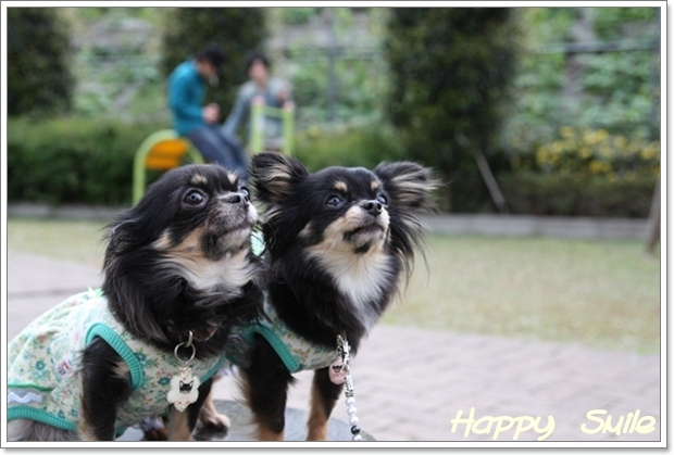 HAPPY☆SMILE-happy-smile