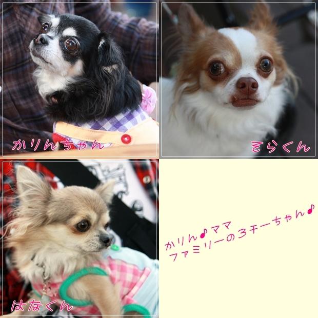 HAPPY☆SMILE-happy-smiler