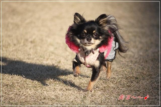 HAPPY☆SMILE
