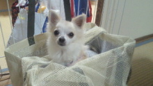 HAPPY☆SMILE-2011020223220000.jpg