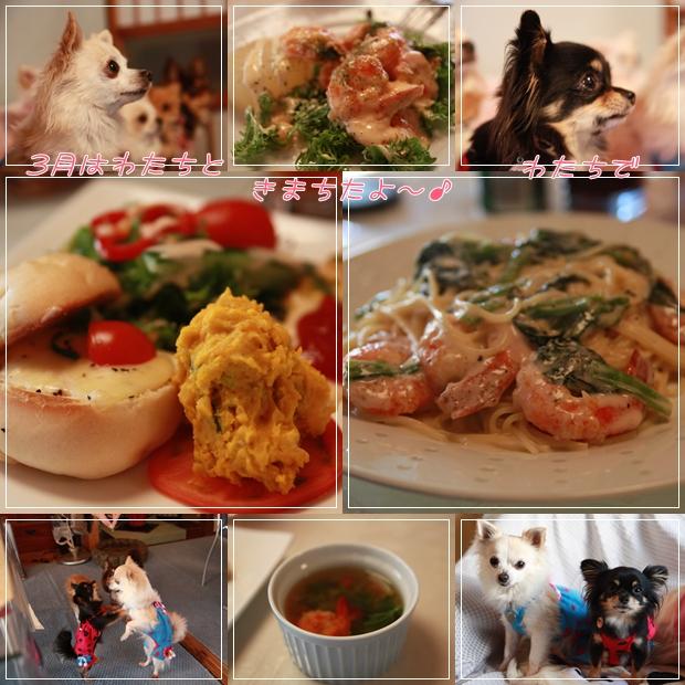 cats_20110614212036.jpg