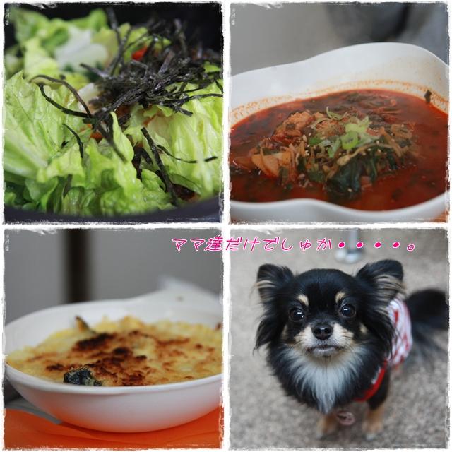 cats_20111217134916.jpg