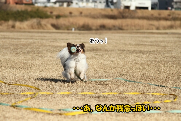IMG_0912初宇奈根初宇奈根