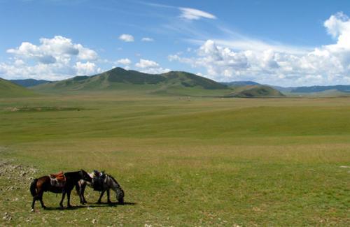 mongol_kiji048_01_convert_20120426221156.jpg