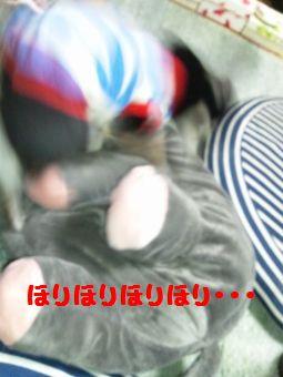 CameraZOOM-20120425193642250 (255x340)