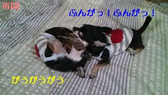 2012-07-06 07-09-09-871