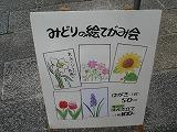 DSC09147_20101025171506.jpg