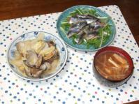 1/11 夕食 さんまの刺身、アサリと白菜のコンソメ煮、もやしの味噌汁