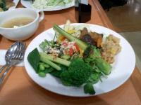 1/26 昼食 サラダ他  フェスタガーデン