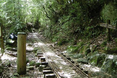 zDSCN2005.jpg
