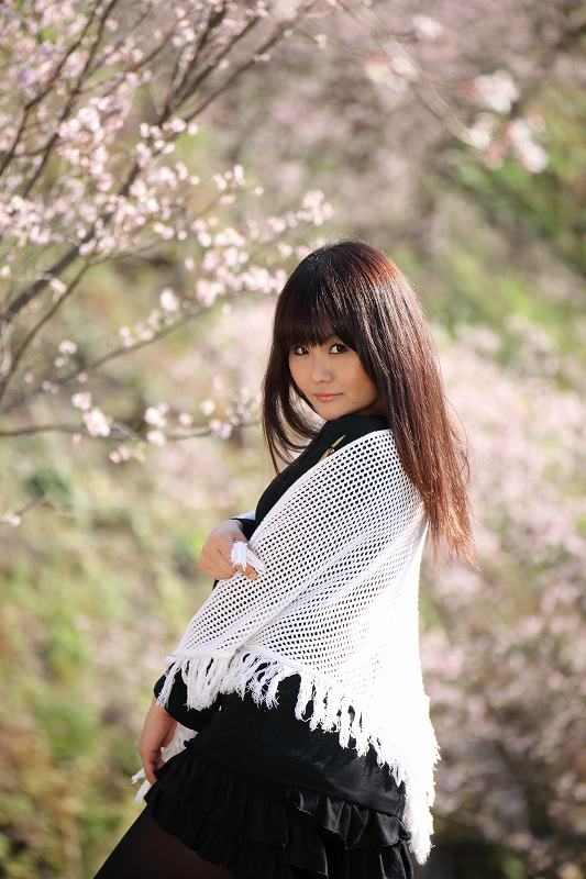 桜山2011_2936