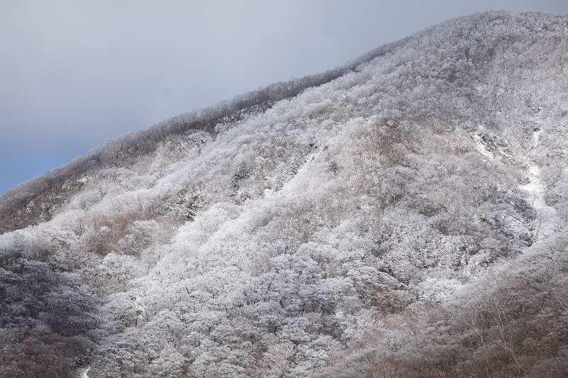 冬の赤城_3334