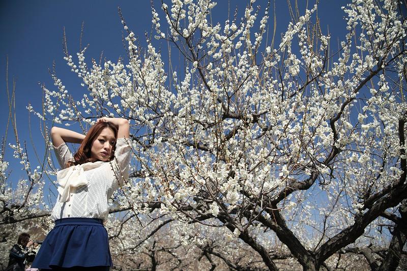 春_4962