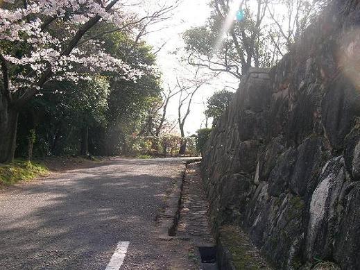 亀居城 004