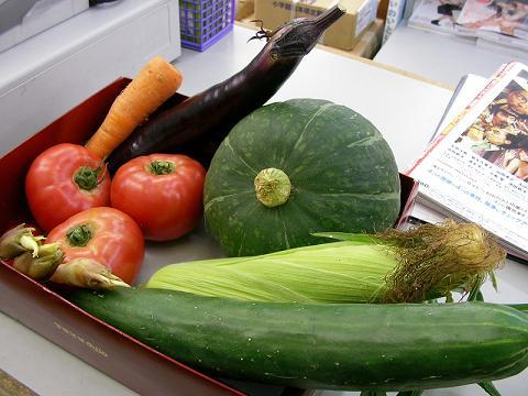夏野菜 002