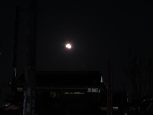 皆既月食IMG_0001