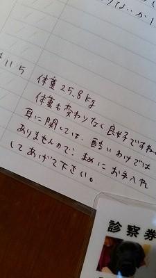 20141105_181211.jpg
