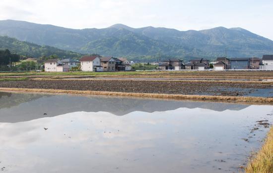 12.5.13水田と大江山
