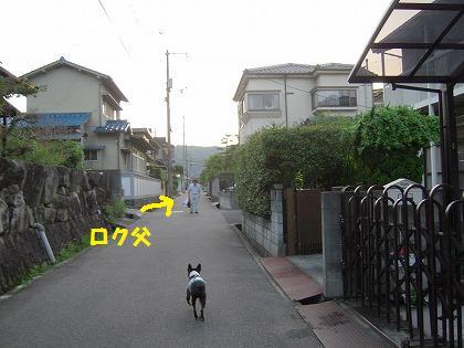 1008122.jpg