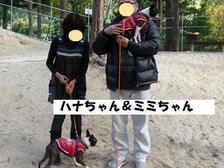 10112132.jpg