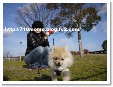 [frame23120348]P1000960
