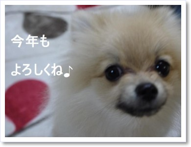 [frame05125669]P1010106