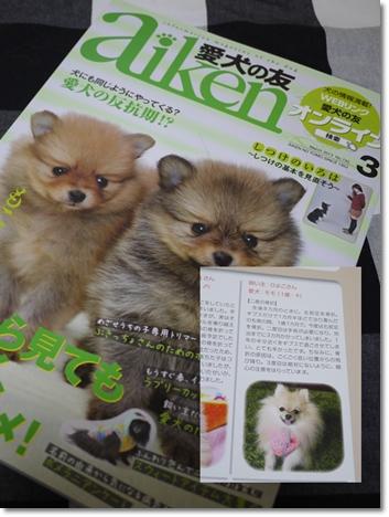 cats1_20130308214431.jpg