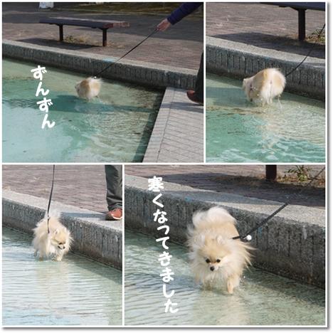 cats_20130129183638.jpg