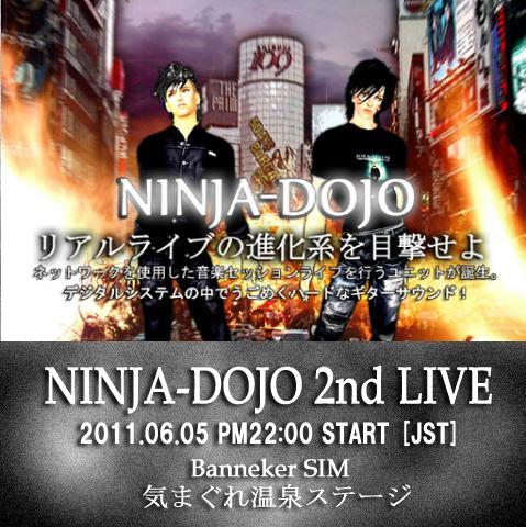 ninja110605.jpg