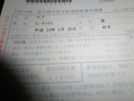 P4036559.jpg