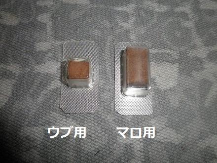 P5016898.jpg