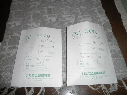 P5287409.jpg