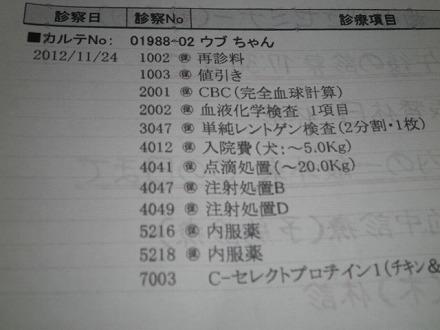PB253069.jpg